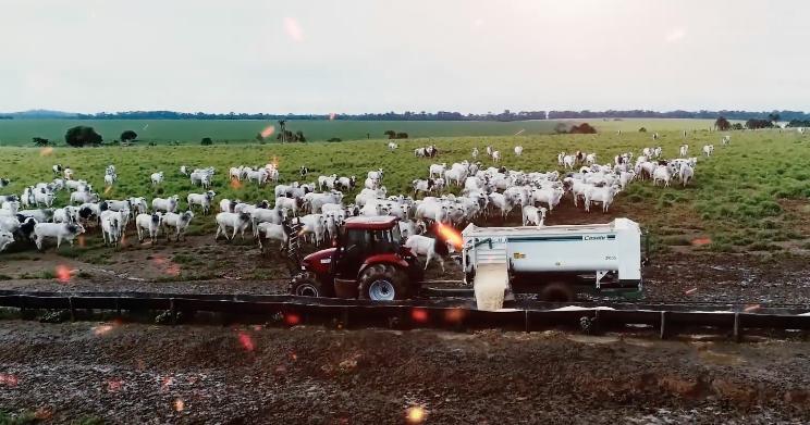 Agrofito Case expõe tratores para agricultura familiar na Farm Show 2019